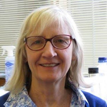 Dr Christine Torpy Photo