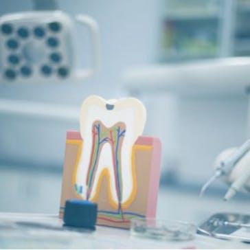 O'Connor Dental Surgery